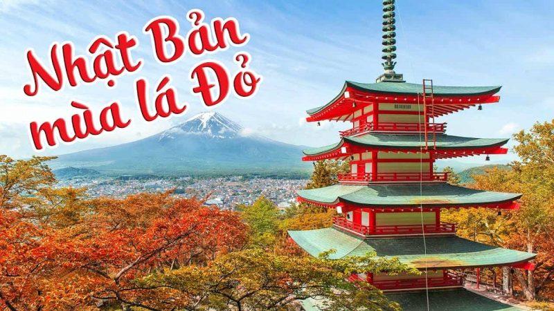 Đi Nhật nên mua gì? TOP những món quà nên mua khi tới Nhật Bản